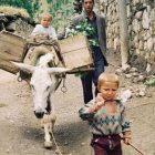 Köyümüzün Çocukları (2)